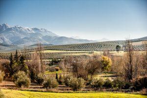 Fotografía del paisaje andaluz en el Parque natural de Cazorla, provincia de Jaén (Andalucia).