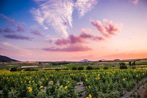 Fotografia de paisaje valenciano en Les Alcusses, conocida como la Toscana Valenciana.