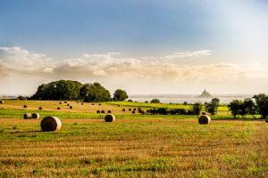 Fotografia de paisaje en los alrededores del Mont Saint Michel, Normadia (Francia).