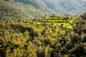 Masia en el valle del rio Cervol, provincia de Castellón.