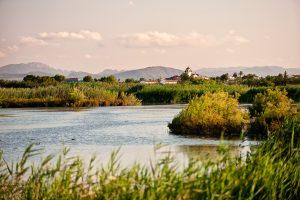 Vista del pueblo de San Felipe Neri en el Parque natural del Hondo de Elx, provincia de Alicante.