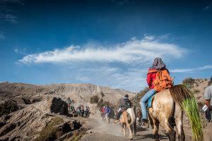Fotografia de viajes : Caballos con turistas subiendo la caldera del volcan Bromo en la isla de Java, Indonesia